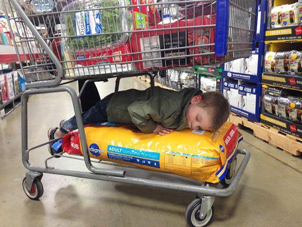 Tidur di atas makanan anjing Diajak ibu belanja bulanan, capek jalan keliling, akhirnya tidur di atas makanan anjing.