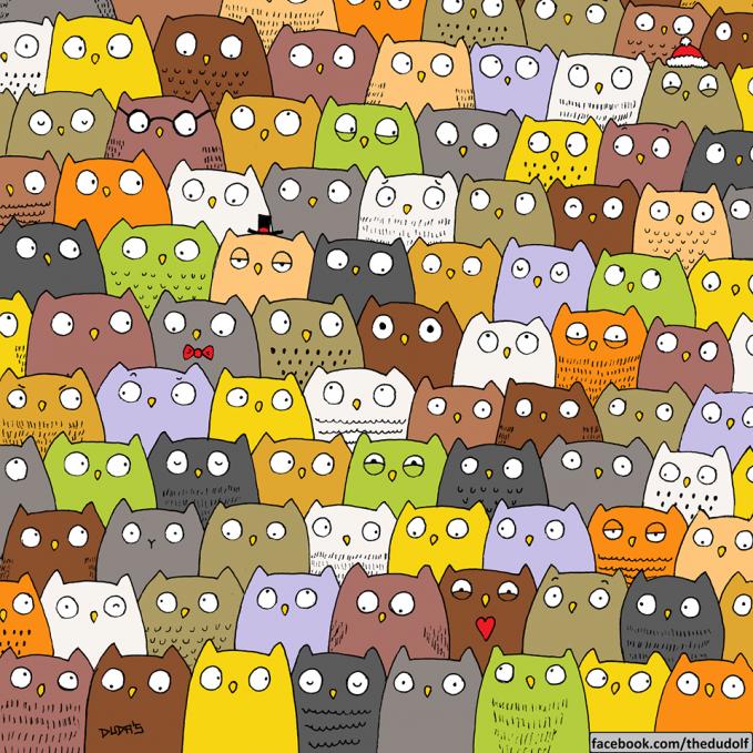 Hayo coba temuin kucing di antara burung hantu-burung hantu ini.