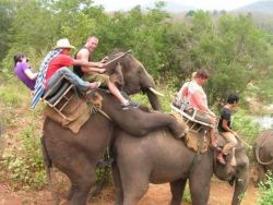 Kumpulan Foto Konyol Turis Paling Memalukan..LOL!