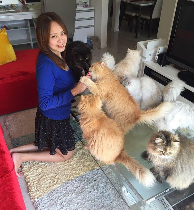 Nah ini dia empunya 12 kucing yang menyebut dirinya sebagai ibu dari 12 kucingnya tersebut.