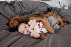 10 Foto Ini Membuktikan Bahwa Anjing Adalah Sahabat Terbaik Anak-Anak