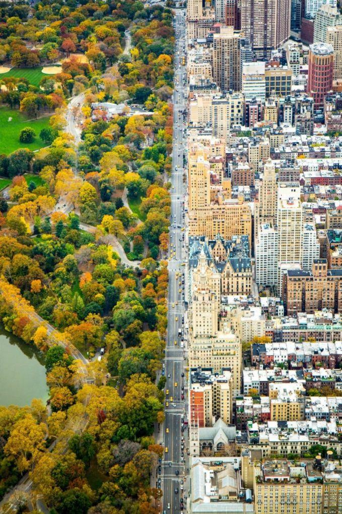 Terlihat dua sisi dari kota New York. Sebelah kiri taman yang hijau dan sebelah kanan deretan gedung pencakar langit.