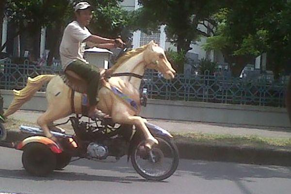 Hayo tebak, ini motor apa kuda? Jawabannya adalah motor berbentuk kuda..ada-ada aja ya Pulsker.