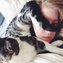 14 Tingkah Konyol Kucing-kucing Ini Bikin Ngakak!
