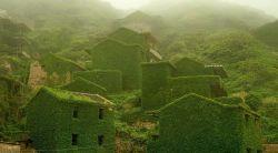 14 Tempat yang Ditinggalkan Ini Diambil Alih Kembali oleh Alam
