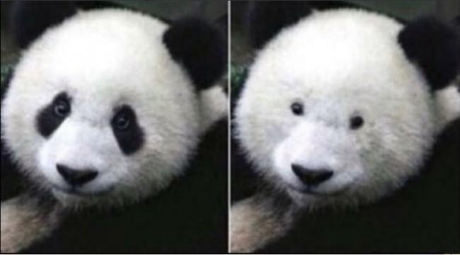 Nah, ini yang paling lucu..ini penampakanmu saat temanmu menyuruhmu melepas kacamata..saat dibuka, pasti mereka pada ketawa karena melihat matamu yang lucu..hahaha
