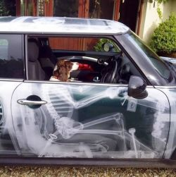 12 Pemilik Mobil Ini Kreatif Banget