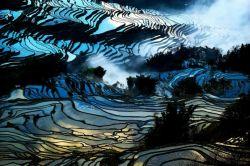 Hamparan Sawah di Cina Ini Memiliki Keindahan yang Menakjubkan Bagaikan Lukisan