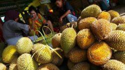 Jangan Ngaku Pecinta Durian Kalau Belum Nyoba 10 Durian Khas Indonesia Ini