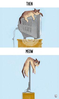 Ternyata Perkembangan Teknologi Berpengaruh Juga ke Kehidupan Kucing, Ini Dia Buktinya