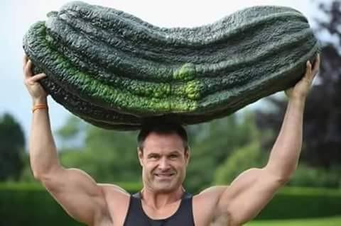 Biasanya kita melihat sayuran yang dimasak oleh ibu kita ukurannya hanya dalam genggaman tangan. Tapi sayuran ini beda pulsker, membawanya pun harus diangkat oleh pria bertubuh kekar ini nih.