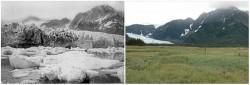 Miris Banget, Ini Perbedaan Foto Bumi Dulu Dan Sekarang