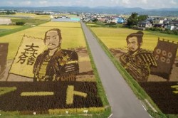 WOW...Sawah-Sawah di Jepang Ini Disulap Menjadi Objek Mural yang Super Keren