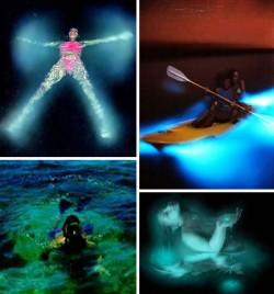 Tempat Berenang Paling Mengagumkan di Dunia