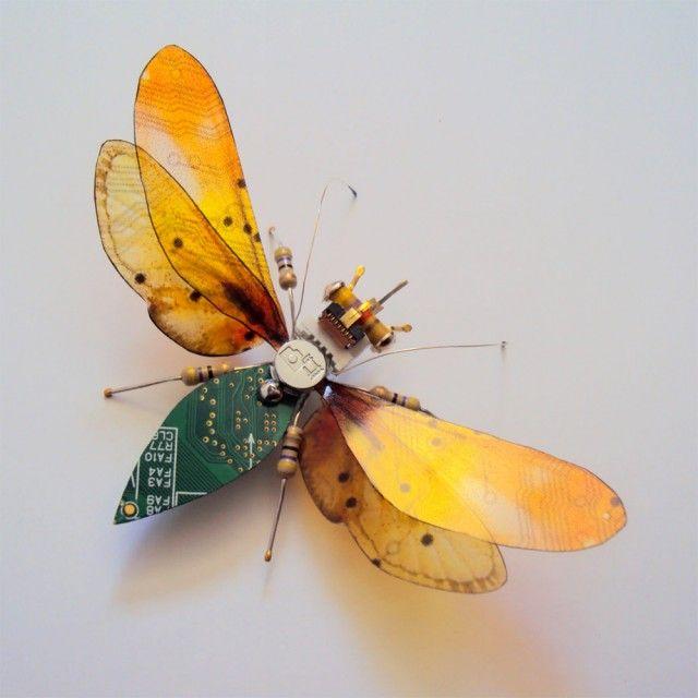 Selain memiliki bentuk yang indah lebah juga bisa menghasilkan madu yang berguna bagi manusia. Lebah juga memiliki sengatan yang menyakitkan. Tapi kalau lebah yang ini beda ya pulsker. Dia tidak menyengat dan tidak bisa menghasilkan madu.