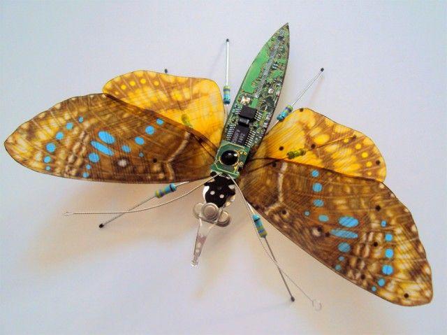 Atau jika kalian suka dengan kupu-kupu yang leibh terlihat natural, ini bisa jadi alternatif pulsker. Warna sayapnya yang cokelat degan sedikit titik-titik biru menambah kesan alami dalam kreasi ini. Gak nyangka ya pulsker kalau chips bekas di sekitar kita jika kita kreatif bisa jadi kreasi yang keren begini. Boleh dicoba ya pulsker dirumah.