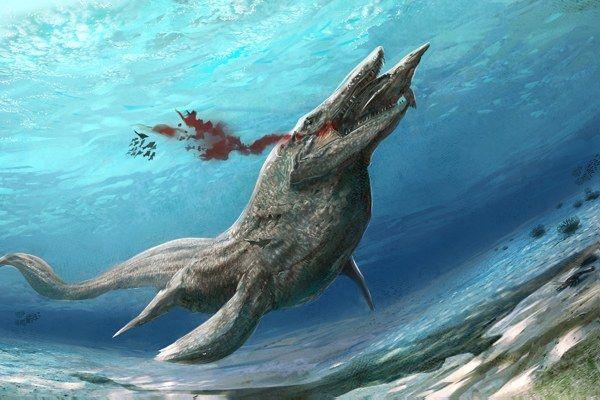 Ada pula yang namanya Tylosaurus pulsker. Sebenarnya dia masuk dalam kategori kadal laut , bukan termasuk dinosaurus. Walaupun begitu dia adalah predator laut dalam yang dominan di jamannya. Hewan ini mempunyai tubuh yang panjang ramping dengan permukaan atas berwarna gelap dan sisi bawah lebih terang, yang menyamarkan keberadaannya dalam air. Binatang ini mengibaskan ekornya ke kanan dan kiri dan sisi lain sewaktu berenang. Tylosaurus memiliki tengkorak yang panjangnya 1,75 meter dengan rahang penuh gigi tajam berbentuk kerucut, yang dengan mudah merobek tubuh mangsanya.