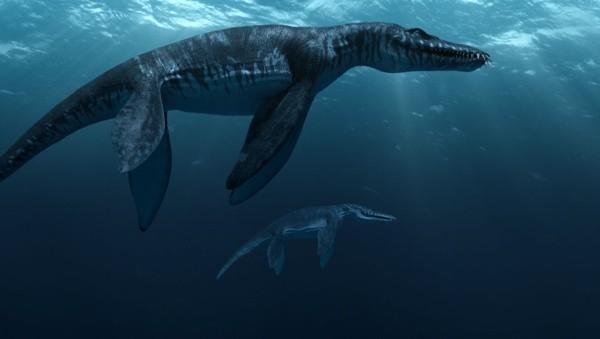 Liopleurodon merupakan monster pemakan daging yang memiliki ukuran sangat besar, dengan panjang tubuhnya hingga 10 meter. Raksasa ini memiliki empat kaki yang bentuknya menyerupai dayung yang besar dan kuat, membuatnya menjadi perenang yang baik dengan kecepatan yang luar biasa. Liopleurodon dianggap sebagai penguasa laut karena termasuk dalam predator terbesar pada masanya.