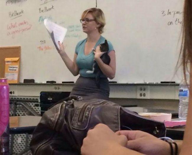 Sebelum memasuki kelas,guru ini menemukan kucing yang telantar. Lalu dia menggendong kucing itu ke kelas dan lanjut mengajar para siswanya.
