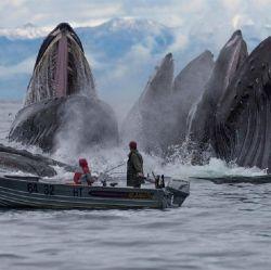 Tak Selamanya Laut Menyimpan Keindahan, Begini Sisi Lain Tentang Lautan yang Nampak Menyeramkan