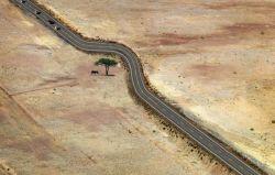 8 Foto Inspiratif tentang Bagaimana Manusia Menghargai dan Tidak Merusak Lingkungan Sekitarnya