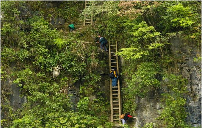 Begitu juga dengan anak-anak di desa Zhang Jiawan di selatan Cina. Setiap harinya mereka harus menaiki tangga-tangga ini untuk sampai ke sekolah mereka pulsker. Dan itu tangganya tidak hanya berjumlah satu-dua lho, ada banyak tangga juga.