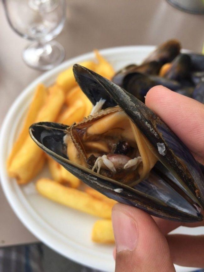 8 Hal Unik Pada Makanan Sehari-Hari Bikin Kalian Gak Nyangka dan Jarang Terjadi
