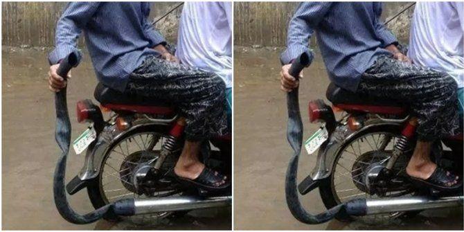 Mumpung sekarang lagi musim hujan dan banjir, tidak ada salahnya membungkus knalpot agar tidak kemasukan air. Kalau kemasukan air bisa-bisa motor jadi mogok malahan. Biar aman bisa dibungkus pakai karet seperti ini nih.
