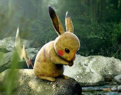 Gini Nih Jadinya 10 Sosok Tokoh Kartun Pokemon Hidup di Dunia Nyata, Gemesin Lho