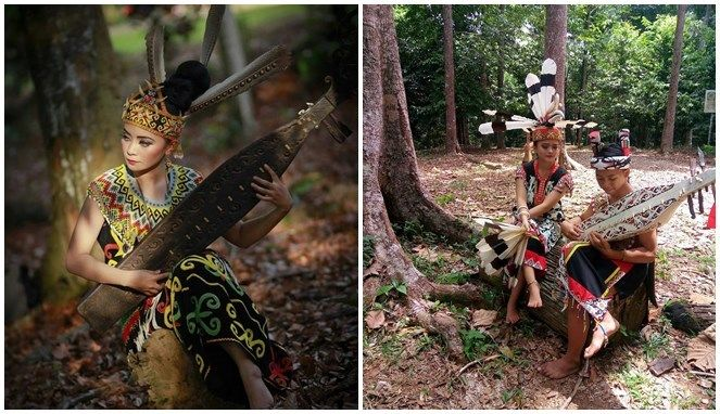 Tidak hanya menari, perempuan Dayak juga pandai memainkan alat musik tradisional mereka yaitu Sape.