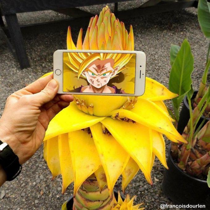 Selain itu, bunga ini juga bisa menjadi rambut kuning Goku lho!