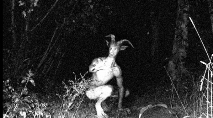 Di wilayah Louisville, Amerika Serikat orang-orang dikejutkan dengan sosok manusia berkepala domba pulsker. Dia dijuluki sebagai The Pope Lick Monster. Menurut kepercayaan setempat, ketika kalian melihat sosok ini, maka kalian akan tertimpa musibah seperti kecelakaan dan sebagainya.