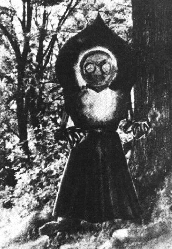 Tahun 1942 silam di Amerika Serikat, sekelompom anak muda melihat sosok aneh turun dari langit. Saat didekati sosok tersebut memancarkan sinar aneh dengan suara mendesis. Lantas, orang-orang pun menamakannya sebagai The Flatwoods Monster pulsker.