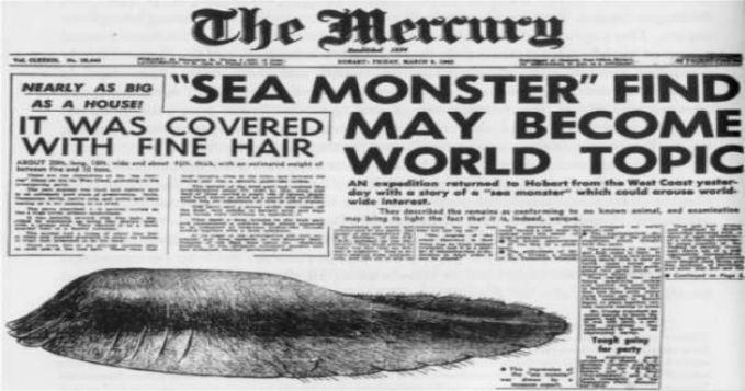Di pulau Tasmania, Australia bukan hanya Tasmanian Devil saja yang menjadi misteri. Sebuah bangkai makhluk aneh ditemukan di pantai barat Tasmania. Beratnya mencapai 10 ton lho pulsker. Hasil investigasi ada yang bilang jika itu adalah seekor ikan paus.