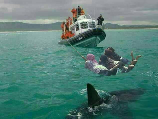 Pakai wahana boat seru kali pulsker sambil selfie. Sampai-sampai gak nyadar kalau dibawahnya ada seekor ikan hiu ganas yang sedang mengintai keempat cewek ini.