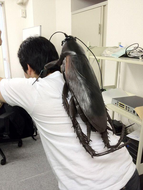 Cockroach Backpack Kecoak adalah hewan yang hewan yang sangat menjijikan. Tapi lihat, seseorang mendesain tas dengan bentuk kecoak. Dan ini hasilnya saat tas ini hinggap dipunggung. Yang nggak tau pasti ngeri banget nih!