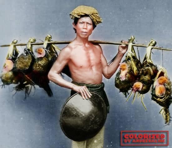 Ini salah satu penjual pikulan yang lain yaitu penjual ayam kampung.