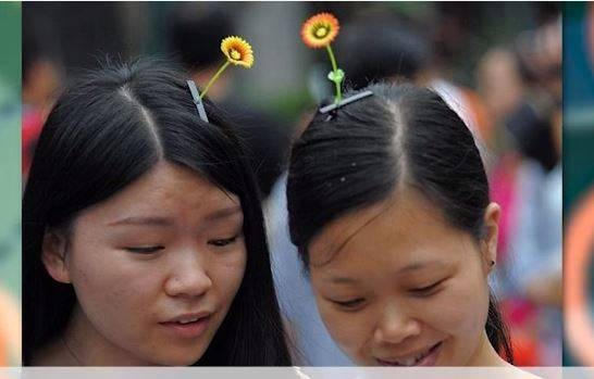 Kalau dulu ada jepit kupu-kupu yang menggunakan pir, saat ini ada tren dari China yang meletakkan tumbuhan hidup diatas kepala mereka sebagai aksesoris.