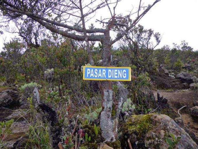 Sedangkan di lereng gunung Merbabu ada yang disebut pasar Dieng pulsker. Konon ini adalah pasar bagi para setan yang berada di kawasan Kentheng Songo. Para pendaki mengaku bertemu dengan gadis misterius yang meninggal saat mendaki gunung ini pulsker. Arwah gadis ini akan mengajak pendaki lain untuk menjatuhkan diri ke dalam jurang.
