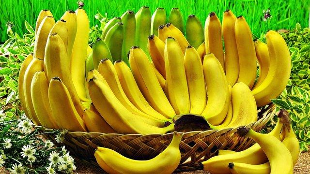 Pisang manfaatnya banyak banget melawan penyakit pulsker. Terutama jantung penderita diabetes, anemia, maag, dan banyak lagi. Jika kalian mengkonsumsinya saat sahur, buah ini dapat membantu tubuh tetap segar.
