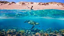 7 Keindahan Perth dan Pesona Alam Australia Barat yang Memukau