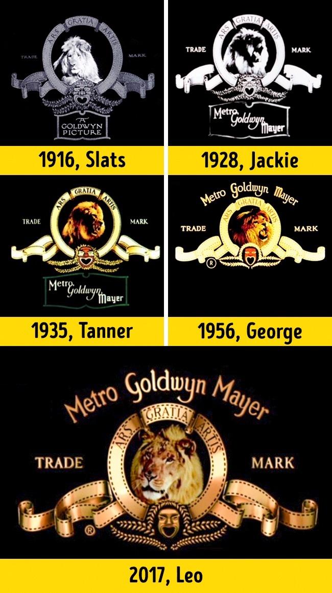 Dari tahun ke tahun, singa yang ada di logo studio MGM ternyata berbeda-beda lho pulsker. Logo tersebut berasal dari ide Howard Dietz pada 1924 yang merupakan logo tim olahraga Columbia University, 'The Lions'. Dan singa terakhir yang menjadi ikon logo MGM saat ini adalah Leo.