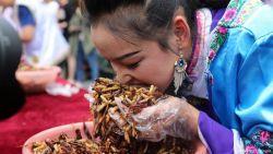 Duh, Orang-Orang Ini Nekad Makan Serangga Demi Mendapatkan Emas Batangan