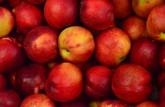 Apel Mengkosumsi apel 1-2 buah apel sehari akan membuat pencernaamu lancar. Apel mengandung serat baik yang dapat membantu kerja usus dalam mencerna makanan yang masuk dalam tubuh kita.