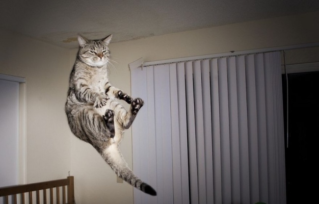 Listen here, noob. I can fly trough the room. LOL.