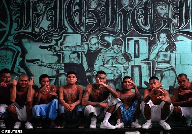 Para anggota geng kebanyakan mereka yang berasal dari keturunan Meksiko, dan dibesarkan di kawasan penuh kekerasan Honduras, El Salvador, dan Guatemala. Karena semakin besar, anggota geng akhirnya menyebar ke hampir seluruh Amerika.