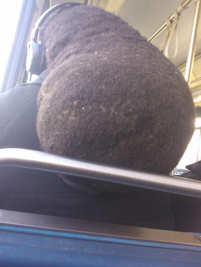 Eh, itu beneran rambut orang kan?. Kok malah mirip sarang tawon gitu ya kalau diliat lagi dari belakang?.