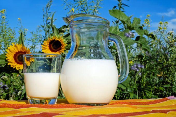 Sebagai pelengkap ada baiknya untuk minum susu atau mengkonsumsi produk dari susu Pulsker. Susu, Yoghurt dan produk susu lainnya mengandung vitamin B dan protein tinggi. Nutrisi tersebut penting dalam pertumbuhan jaringan otak. Selain itu juga jadi sumber energi untuk tubuh selalu fit. Nah, itu dia Pulsker beberapa makanan yang layak kalian konsumsi agar daya ingat makin tokcer. Semoga bermanfaat ya.