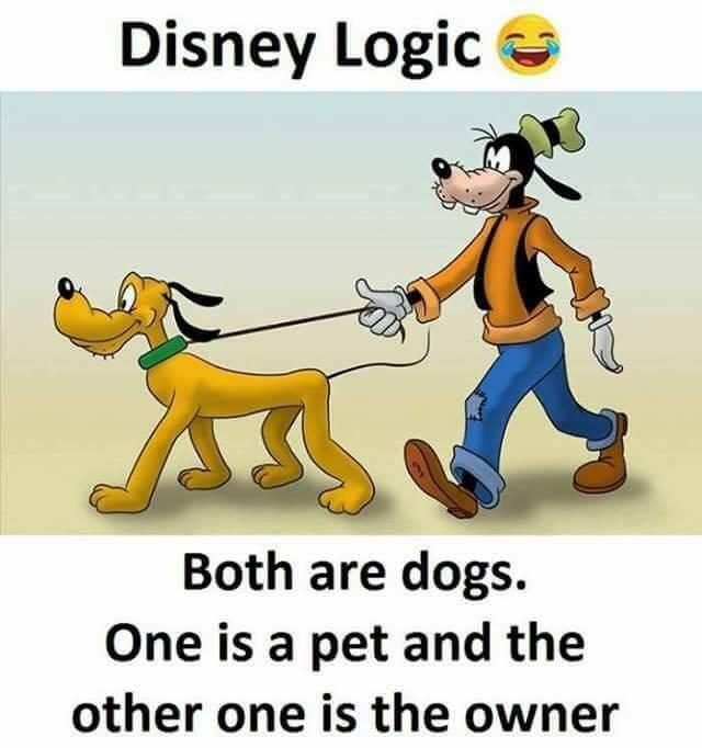Baru kali ini nih, ada anjing melihara anjing juga. Wah, jeruk makan jeruk nih jadinya Pulsker.
