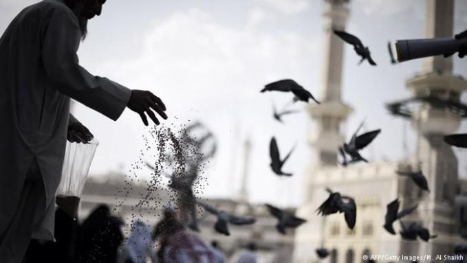 Petugas kebersihan yang disebar sebanyak 23.000 orang di Mekah dan Madinah. Tercatat setiap tahun rata-rata jamaah meninggalkan 6 juta ton sampah. Nggak heran kalau jamaah haji membuang 2.1 juta gelas plastik air zamzam tiap tahun. Itu dia Pulsker beberapa fakta menarik tentang pelaksanaan ibadah haji dalam angka. Kita doakan saja semoga jamaah haji kita dapat selamat sampai kembali ke tanah air. Dan semoga menjadi haji yang mabrur.